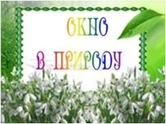 http://roshsob.ucoz.ru/foto-risunki/kartinki/okno_v_prirodu.jpg